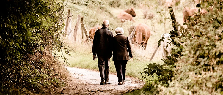介護サービス付高齢者住宅